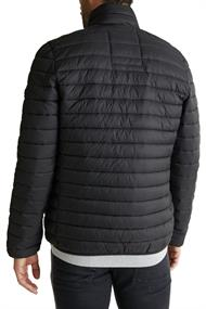 Steppjacke mit 3MT ThinsulateT-Füllung black